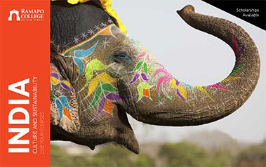 India - Culture and Sustainability