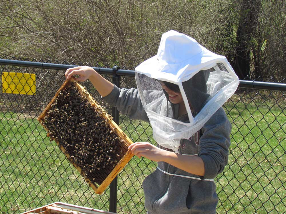Ramapo College student holding bees