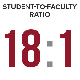 Student-to-Faculty Ratio