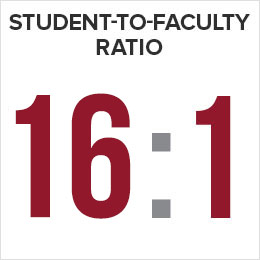Student-to-Faculty Ratio 16:1